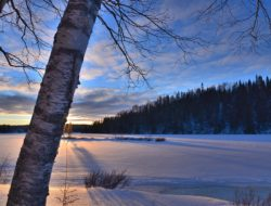 winter-landscape-1147636_960_720