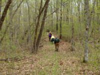 Itasca Moraine Chapter, North Country Trail Assoc.
